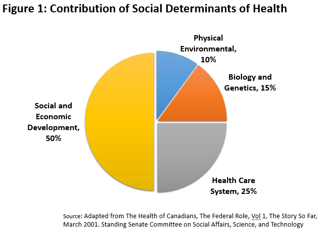 Figure1: Contribution of Social Determinants of Health. Social and Economic Development 50%, Physical Environment 10%, Biology and Genetics 15%, Health Care System 25%