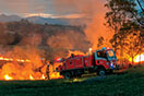 Brown_Phil_Grass-fire-Candelo