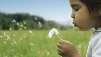 Girl blowing flower