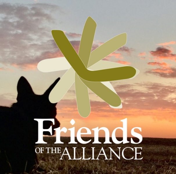 Friends Of the Alliance logo over image of dog and sunset