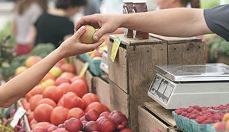 Report: Food Security and health in rural and remote Australia
